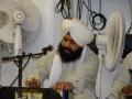 Bhai Bahader Singh (3)